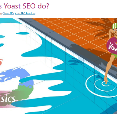 yoast-seo-and-what-it-does